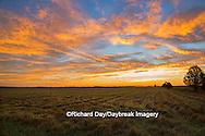 63893-02908 Sunrise at Prairie Ridge State Natural Area, Marion Co, IL