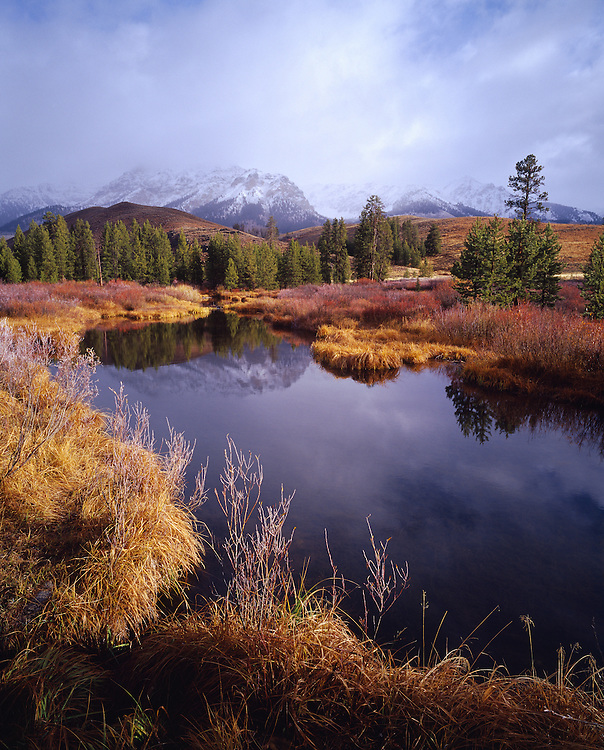 Boulder Mountain Beaver Ponds as fall colors take over willows and surround cover with Snow Capped peaks seen through lifting cloud cover in Central Idaho. Licensing and Limited Editions.