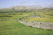 Limestone dry stone walls and view of the Burren, near Ballyvaughan, County Clare, Ireland