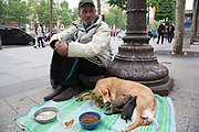 Homeless man sits begging with his dog and her litter of puppies on The Avenue des Champs-Elysees in Paris, France. Sitting on the pavement next to an ornate lamp post, the division between rich and poor becomes ever more apparent.