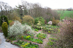 Overhead view of the garden at Glebe Cottage in spring showing structure and layout of brick paths and rectangular beds
