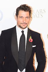 "Battersea, London, November 3rd 2016.  Celebrities and their dogs attend The Evolution at Battersea Park to attend The Battersea Dogs and Cats Home ""Collars and Coats Ball"". PICTURED: David Gandy"