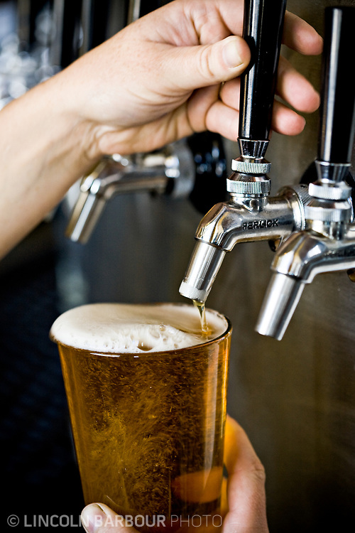 A bartender fills a beer from the taps.