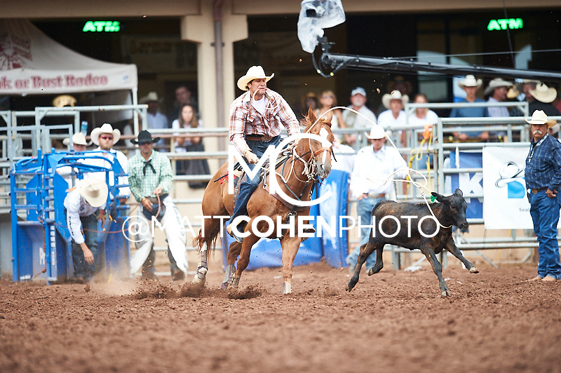 Tie-down roper Michael Otero of Lowndsboro, AL competes at the Pikes Peak or Bust Rodeo in Colorado Springs, CO.<br /> <br /> <br /> UNEDITED LOW-RES PREVIEW<br /> <br /> <br /> File shown may be an unedited low resolution version used as a proof only. All prints are 100% guaranteed for quality. Sizes 8x10+ come with a version for personal social media. I am currently not selling downloads for commercial/brand use.