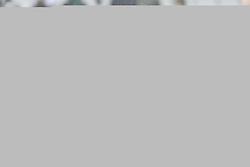 February 10, 2019 - Brugge, Belgium - BRUGGE, BELGIUM - FEBRUARY 10 : Irvin Cardona forward of Cercle Brugge in discussion with Benoit Poulain defender of Club Brugge during the Jupiler Pro League match between Cercle Brugge and Club Brugge at the Jan Breydel stadium on February 10, 2019 in Brugge, Belgium, 10/02/2019 (Credit Image: © Panoramic via ZUMA Press)