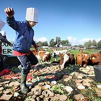 Nederland, Abcoude , 4 oktober 2012..het koeienontbijt/ boerderijles bij boerderij Nooit Gedacht in Abcoude..Kinderen uit groep 5hebbeneenontbijtgemaaktdatdekoeienaanlangegedektetafelszullenopeten..Foto:Jean-Pierre Jans