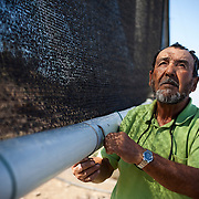 Hugo Streeter from a fog collecting co-operative in Chanaral, looks at a large fog collecting net Santiago in Chanaral, Chile