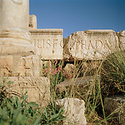 Details of stone carvings and columns at the ruined Roman city Leptis Magna, Libya