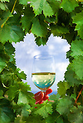 Grape leaves heart - toasting glass of wine