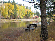 Park Bench along the river in the fall