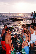 stranded baby sperm whale, Physeter macrocephalus, is supported by volunteers  at shoreline in Kona, Hawaii while waiting for transport to rehabilitation tank