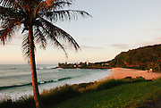 A palm tree and Waimea Bay are shown in this image of Hawaii.