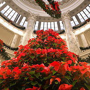 Boise State Capitol at Christmas, Boise, Idaho