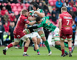 Benetton Rugby's Marco Lazzaroni under pressure from Scarlets' John Barclay<br /> <br /> Photographer Simon King/Replay Images<br /> <br /> EPCR Champions Cup Round 3 - Scarlets v Benetton Rugby - Saturday 9th December 2017 - Parc y Scarlets - Llanelli<br /> <br /> World Copyright © 2017 Replay Images. All rights reserved. info@replayimages.co.uk - www.replayimages.co.uk
