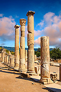Pillars of The Basilica, 1st Century A.D. Ephesus Archaeological Site, Anatolia, Turkey. .<br /> <br /> If you prefer to buy from our ALAMY PHOTO LIBRARY  Collection visit : https://www.alamy.com/portfolio/paul-williams-funkystock/ephesus-celsus-library-turkey.html<br /> <br /> Visit our TURKEY PHOTO COLLECTIONS for more photos to download or buy as wall art prints https://funkystock.photoshelter.com/gallery-collection/3f-Pictures-of-Turkey-Turkey-Photos-Images-Fotos/C0000U.hJWkZxAbg