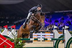 Van Beek Roy, BEL, Chacco Me Biolley<br /> Jumping Mechelen 2019<br /> © Hippo Foto - Dirk Caremans<br />  26/12/2019
