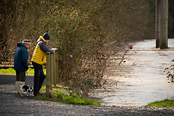 © Licensed to London News Pictures. 29/01/2020. Hay-on-Wye, Powys, Wales, UK. Peopl check the river level as the river Wye bursts it's banks at Hay-on-Wye in Powys after more rainfall in Wales. Photo credit: Graham M. Lawrence/LNP