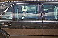11062010. Paris. ElysŽe. Vladimir Poutine, prŽsident du Gouvernement de la FŽdŽration de Russie, premier ministre, rencontre le prŽsident Nicolas Sarkozy lors d'un dŽjeuner. VLADIMIR POUTINE, russian prime minister, meets french president Nicolas Sarkozy in Paris.