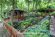 65021-028.13 Shade garden with stream on hillside, path, bridges, gazebo,  hostas, ferns,  St. Louis  MO