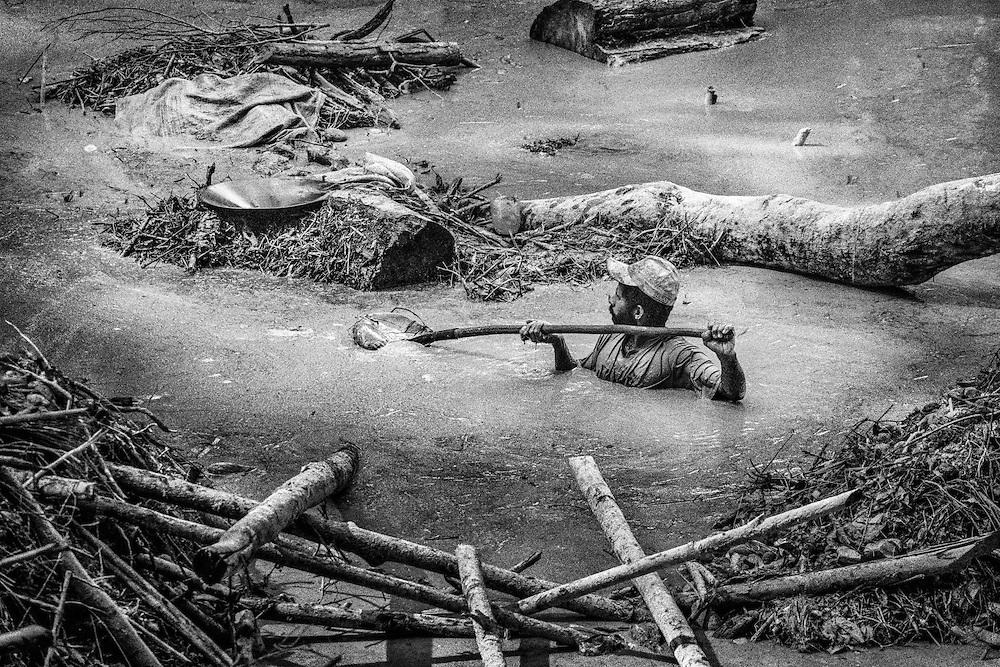 Brazil, Amazonas, Eldorado do Juma.<br /> <br /> Grota rica, garimpeiro.<br /> Eldorado do Juma est maintenant un bidonville de plastique noir et de misere croissante sur la rive du fleuve, qui attire les prospecteurs. Des centaines d'hommes y creusent la boue sur leurs petites parcelles delimitees par des branchages et des ficelles. A la fin du jour, les plus chanceux auront trouve quelques poussieres d'or, vendues ensuite 40 reals le gramme (14,5 euros) a Apui, 65km au nord. Les plus riches du coin sont ceux et celles qui cuisinent, nettoient ou divertissent les mineurs.<br /> Il y a trop de prospecteurs pour la teneur du filon, du coup les garimpeiros s'eparpillent sur une surface qui couvre plus de 40 hectares. Tous les mineurs dependent de l'autorisation d'une cooperative de proprietaires pour travailler. Ces proprietaires ne possedent pourtant pas de titre foncier pour justifier leur etat, ils sont simplement arriver les premiers sur les parcelles : c'est la loi de l'or.<br /> Quatre mois apres le debut de cette ruee, la plupart du minerai qui peut etre extrait manuellement a ete trouve, les mineurs qui restent sont les survivants de la rumeur. Ils n'ont souvent plus rien et esperent seulement trouver de quoi payer le voyage pour aller tenter leur chance vers d'autres terres promises.
