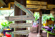 Maui, Hawaii. Hana Farms, a cooperative organic farm in Hana, Maui