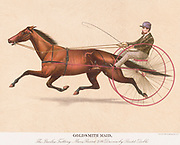 """Goldsmith Maid (1857 – September 23, 1885) was a prominent Standardbred racemare in the 1870s that was called the """"Queen of the Trotters"""" and had a harness racing career that spanned 13 years. Her last race was won at the age of 20 against a much younger horse named Rarus.[1] She was inducted into the Harness Racing Hall of Fame in 1953."""