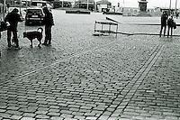 Lufting av hunder på en brosteinbelagt sgate i Bergen.<br /> Foto: Svein Ove Ekornesvåg