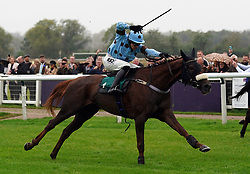 Fat Sam ridden by jockey James Davies (left) on their way to winning the Colliers Saves Business Rates Handicap Chase at Warwick Racecourse. Picture date: Thursday September 30, 2021.