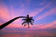 Sunset<br />