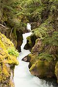 Avalanche Creek Explodes in Glacier National Park