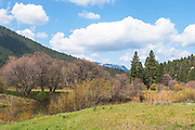 Indian Creek, Mt. Hough, Grizzly Ridge, Genesee Valley, Cottonwoods, Willows, Meadow, Green Pastures, Blue Skies, California Ranches, Sierra Nevada Mountains, Ponderosa Pine