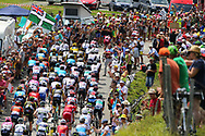 Col d'Aspin, public and peloton during the 105th Edition of Tour de France 2018, cycling race stage 19, Lourdes - Laruns (200 km) on July 27, 2018 in Laruns, France - photo Kei Tsuji / BettiniPhoto / ProSportsImages / DPPI