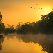 Morning mist over Kuruva river