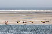 Kayaks along a beach of Little Talbot Island State Park Florida