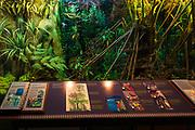 Interpretive display at the visitor center, Hawaii Volcanoes National Park, Hawaii USA