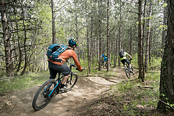Bikers riding through forest