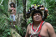 Chief Almir Narayamogo in the Surui territory, another Surui indian is using a GPS geolocalisation equipment reciever primary rainforest interior.<br /><br />An Amazonian tribal chief Almir Narayamogo, leader of 1350 Surui Indians in Rondônia, near Cacaol, Brazil, with a $100,000 bounty on his head, is fighting for the survival of his people and their forest, and using the world's modern hi-tech tools; computers, smartphones, Google Earth and digital forestry surveillance. So far their fight has been very effective, leading to a most promising and novel result. In 2013, Almir Narayamogo, led his people to be the first and unique indigenous tribe in the world to manage their own REDD+ carbon project and sell carbon credits to the industrial world. By marketing the CO2 capacity of 250 000 hectares of their virgin forest, the forty year old Surui, has ensured the preservation, as well as a future of his community. <br /><br />In 2009, the four clans and 25 Surui villages voted in favour of a total moratorium on logging and the carbon credits project. <br /><br />They still face deforestation problems, such as illegal logging, and gold mining which causes pollution of their river systems