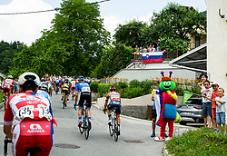 Fans in Idrija during 3rd Stage of 26th Tour of Slovenia 2019 cycling race between Zalec and Idrija (169,8 km), on June 21, 2019 in Slovenia. Photo by Vid Ponikvar / Sportida