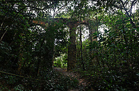 ancient aqueducts,surounding by the rain forest in the beautiful island of ilha grande near rio de janeiro in brazil