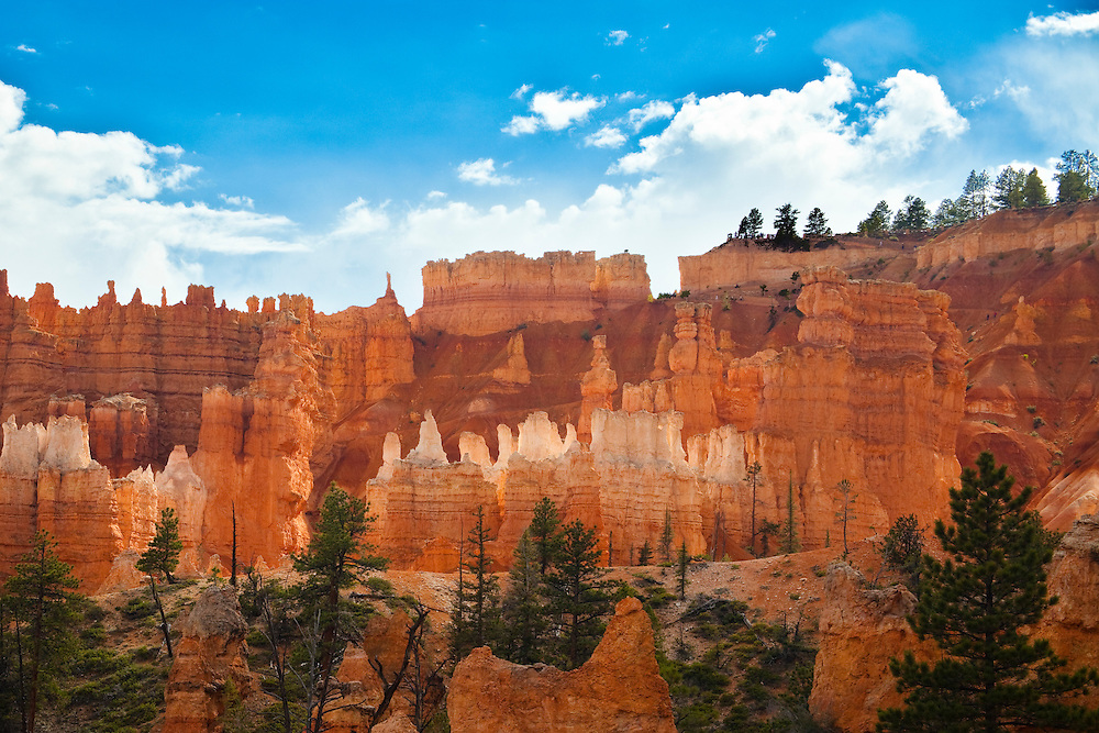 Landscape views of Bryce Canyon National Park. The unique red sandstone columns are called hoodoos and are unique to the park.  They are carved by the relentless freezing and thawing of water trapped in the crevices of the stone.  This view is from the trail along the canyon floor.