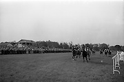 """08/05/1965<br /> 05/08/1965<br /> 08 May 1965<br /> The 1965 Gold Flake Meeting at Leopardstown Racecourse, Co. Dublin. Image shows Mr Raymond R. Guest's """"Rigi"""" (J.M. Purtell up) winning the Three Castle Stakes race from """"Islette"""" (P. Boothman up) and """"Twelve Oaks"""" (J. Hunter up)."""