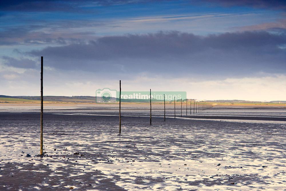 July 21, 2019 - Poles In Water, Near Holy Island, Bewick, Northumberland, England (Credit Image: © John Short/Design Pics via ZUMA Wire)