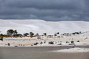 Australia | Cape York Peninsula