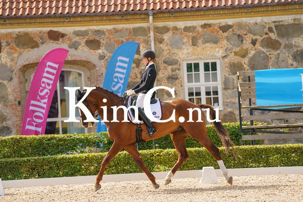 Elin Dahlberg<br /> Enköpings Ridklubb<br /> 67<br /> Handsome<br /> Gelding / KWPN / mfx / 2012 / Johnson x San Remo / J.W.H. Huurneman / Anna Dahlberg Photo: KimC.nu by Ateni AB