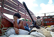 Teenage supporters of the Nicaraguan Sandinista rebels, with a large caliber machine gun, perch among sandbags on a flatbed truck near Masaya, Nicaragua. By using the mobility of the truck, the fighters were able to keep up with advancing government troops.