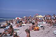 Stubbies California Surf Trials Of 1982