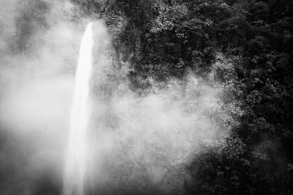 'Akaka Falls, Hilo, Hawaii.