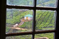 Inde, Etat du Kerala, Munnar, Sivakasi tea estate, usine de the la plus haute du monde // India, Kerala state, Munnar, Sivakasi tea estate, world highest tea factory