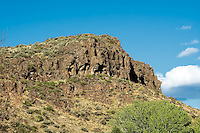 This rock was once molten lava forced from deep within the earth as it covered most of Central Washington, up to three miles deep in some places. Many thousands of years of erosion, weathering and exposure to the elements has left us with massive crumbling rock formations like this basalt rock wall.