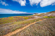 On the Skunk Point trail, Santa Rosa Island, Channel Islands National Park, California USA